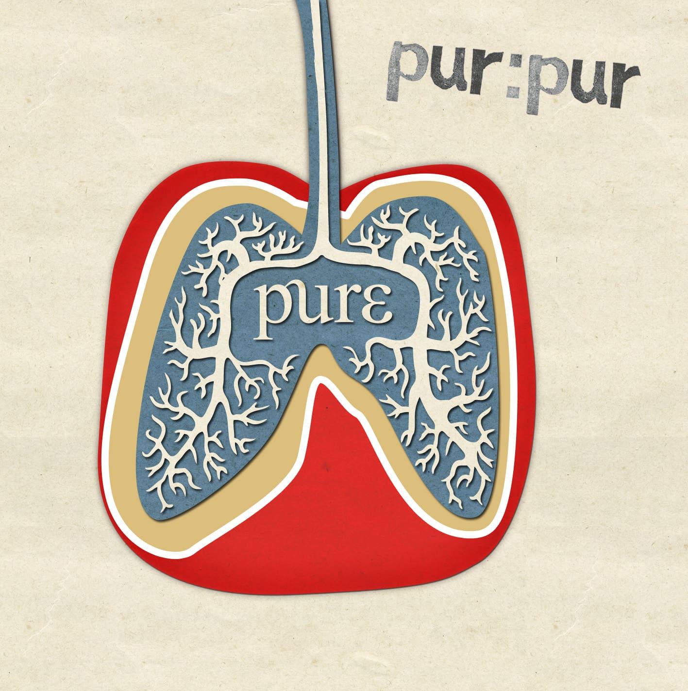 Дебютный альбом группы Pur:Pur – Pure